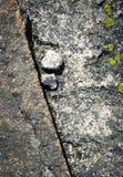 Dwa małego granitu kamienia Fotografia Royalty Free