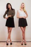 Dwa mody kobiety afrykanin i caucasian pozować Zdjęcie Stock