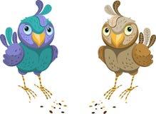 Dwa na biały tle barwiony ptak Zdjęcie Stock