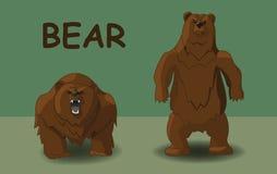 Dwa niedźwiedzia w różnorodnych pozach ilustracja wektor