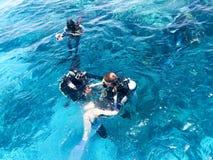 Dwa nurka w czarnych akwalungów nurkowych kostiumach, mężczyzna i kobiecie z tlenowymi butelkami, toną pod przejrzystą błękitne w obrazy royalty free