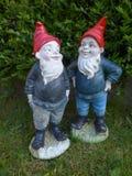Dwa ogrodowy przyćmiewają z czerwonymi kapeluszami przed zielonym żywopłotem Zdjęcia Royalty Free