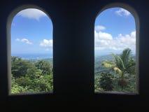 Dwa okno z Lasowym widokiem Obraz Stock
