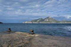 Dwa ośniedziałej gałeczki na Sant wiązu quay Obrazy Royalty Free