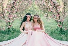 Dwa oszałamiająco elf siedzi w bajecznie czereśniowego okwitnięcia ogródzie Princesses w luksusowym, menchii suknie Blondynka i zdjęcia stock