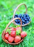 Dwa łozinowych kosza truskawki i czarne jagody Zdjęcia Royalty Free