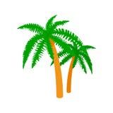 Dwa palm ikona, isometric 3d styl Obrazy Stock