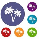 Dwa palmy ikony ustawiającej ilustracja wektor