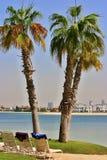 Dwa palmy z Dubaj linią horyzontu Zdjęcie Stock