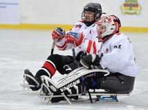 Dwa pełnozamachowego gracz w hokeja Fotografia Stock