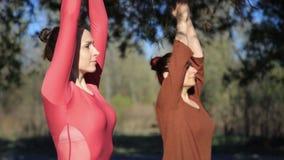 Dwa persons robi pary joga namaste pozie na plaży przy zmierzchem zdjęcie wideo