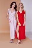 Dwa piękna seksownej kobiety twarzy skóry odzieży jedwabiu ładna suknia tęsk skóra zdjęcia stock