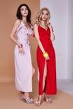 Dwa piękna seksownej kobiety twarzy skóry odzieży jedwabiu ładna suknia tęsk skóra obrazy stock