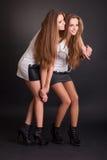 Dwa pięknego dziewczyna bliźniaka, odizolowywającego na czerni fotografia stock