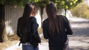 Dwa pięknej długie włosy kobiety chodzi w kwitnącym wiosna parku i dyskutuje opóźnionej plotki, tylny widok Śliczny różnorodny zdjęcie wideo