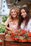 Dwa pięknej dziewczyny wśród kwiatów obraz stock