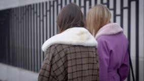 Dwa pięknej dziewczyny w żakiecie Dziewczyny dyskutuje opóźnionej plotki chodzą wzdłuż ulicy i opowiadają, zbiory