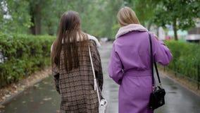 Dwa pięknej dziewczyny w żakiecie Dziewczyny dyskutuje opóźnionej plotki chodzą wzdłuż ulicy i opowiadają, zbiory wideo
