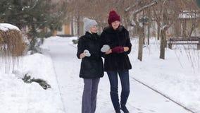Dwa pięknej dziewczyny w czarnym futerkowym żakiecie chodzą w parku w zimie zbiory wideo