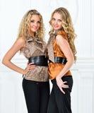 Dwa pięknej kobiety w eleganckim wieczór kostiumu. obrazy stock
