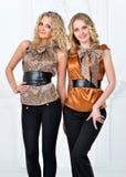 Dwa pięknej kobiety w eleganckim wieczór kostiumu. zdjęcia royalty free
