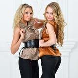 Dwa pięknej kobiety w eleganckim wieczór kostiumu. zdjęcie royalty free