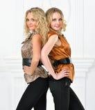 Dwa pięknej kobiety w eleganckim wieczór kostiumu. obrazy royalty free