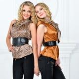 Dwa pięknej kobiety w eleganckim wieczór kostiumu. fotografia stock
