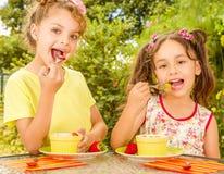 Dwa pięknej młodej dziewczyny, jedzący zdrowej truskawki i winogron używać rozwidlenie, w ogrodowym tle Zdjęcia Stock
