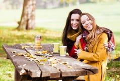 Dwa pięknej młodej kobiety opowiada i cieszy się na słonecznym dniu zdjęcia royalty free