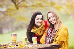 Dwa pięknej młodej kobiety opowiada i cieszy się na słonecznym dniu obraz royalty free