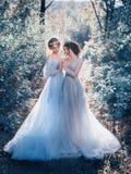 Dwa piękny princess fotografia royalty free