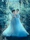 Dwa piękny princess zdjęcie stock
