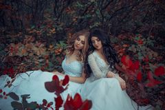 Dwa piękny princess zdjęcie royalty free