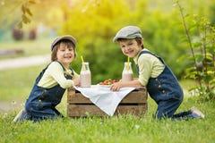 Dwa pięknych dzieci, chłopiec brata, jedzący truskawki i co Fotografia Stock