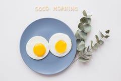 Dwa pięknego jajka na talerzu Obraz Stock