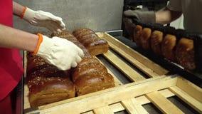 Dwa piekarzów fałdów żyta chleb zdjęcie wideo