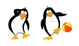 - dwa pingwiny, Fotografia Royalty Free