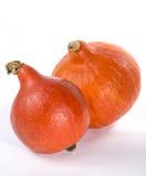 Dwa pomarańcz hokkaida bania obrazy stock