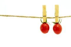 Dwa pomidorów hangin Obrazy Royalty Free