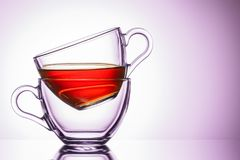 Dwa przejrzystego kubka herbata lokacja na lewicie, w górę R??owy cie? obraz royalty free