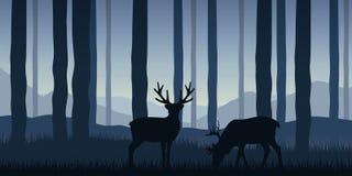 Dwa przyroda renifera w lasowym błękitnym natura krajobrazie ilustracji