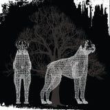 dwa psy bokserki Zdjęcie Stock