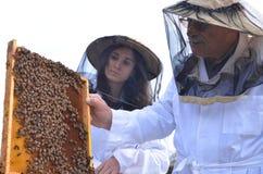 Dwa pszczelarki w pasiece Obrazy Royalty Free