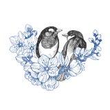 Dwa ptaków ręka rysująca w rocznika stylu z kwiatami Wiosna ptaki siedzi na okwitnięcie gałąź Liniowa grawerująca sztuka ptak ilustracja wektor