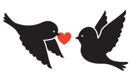 Dwa ptaka ilustracji