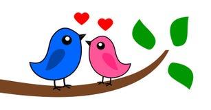 Dwa ptaka który kochają Obrazy Royalty Free