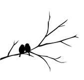 Dwa ptaka siedzi na gałęziastej ilustraci Zdjęcie Stock