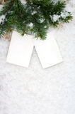 Dwa pustej fotografii gałąź jedli na śniegu Zdjęcia Royalty Free