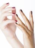 Dwa różny nathion robił manikiur ręki na biały odosobnionym, afrykanin z caucasian zakończeniem up Zdjęcie Royalty Free